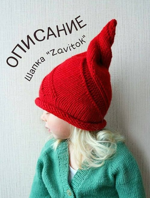 dsap_zavs1