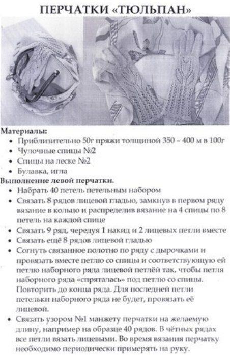 per_tulp1