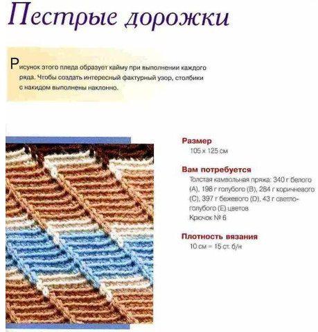 pestrii-pled1