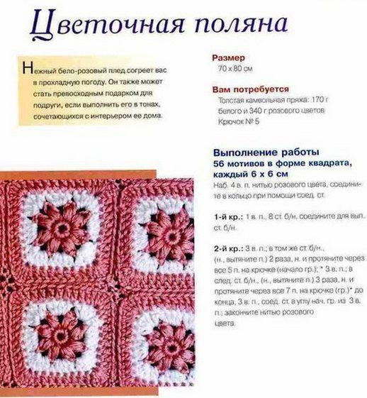 pled-polana1