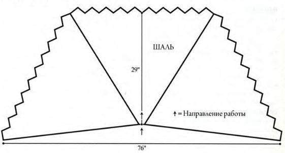 shal-svasat3